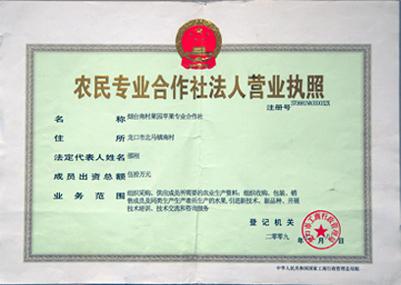 农民专业合作社法人营业执照